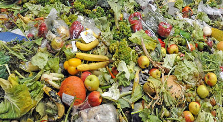 Reducing food wastage by half could feed a billion people