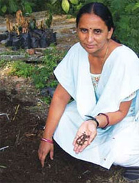 'Compost too needs subsidy'