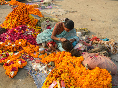 60 quintals of flowers sold every day at Kumbh