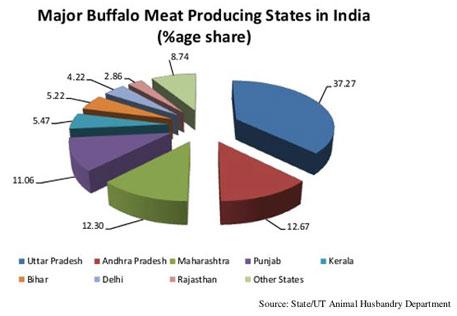Major Buffalo Meat