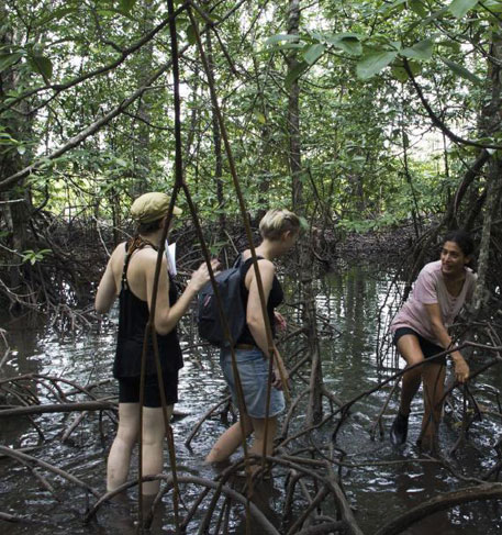 A muddy trail: two landscape architects create a nature trail in Andaman and Nicobar Islands