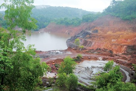 Over 19 mines in Goa were operating in wildlife sanctuaries, including Mhadei Wildlife Sanctuary, in violation of green norms