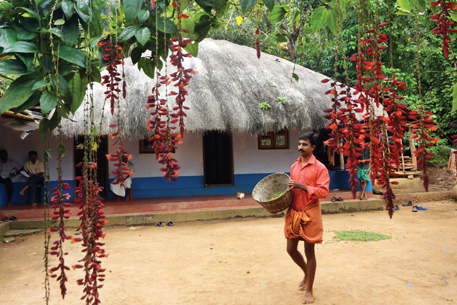 House of a Chetty farmer in the core area of Mudumalai Tiger Reserve in Tamil Nadu