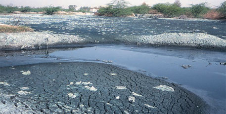 Pollution from Pali's dyeing and printing industries has polluted the Bandi river