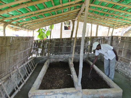 Kushwaha at his vermicompost pits; vermicomposting requires cattle dung in large quantities. With the number of livestock in the village dwindling,farmers have gone back to using chemical fertilisers