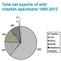 Total net exports of wild cheetah specimens 1990-2012