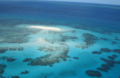 The Great Barrier Reef is the world's largest coral reef system which is threatened by environmental pollution (Photo: Evergreen/UNESCO)
