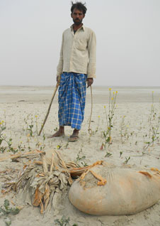 About 200 bodies get washed ashore every year, say residents of Rasulpur Maryadi village (photo by Soma Basu)