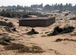 sand laden