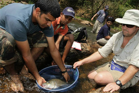 A small Mahseer caught from the river (Photo: The Mahseer Trust Facebook page)