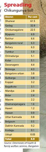 spreading chikungunya toll