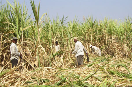 SC: Farmers, not banks, have first right over proceeds from sugar sales