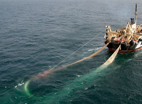 Activists find flaws with Australia's new ban on supertrawlers