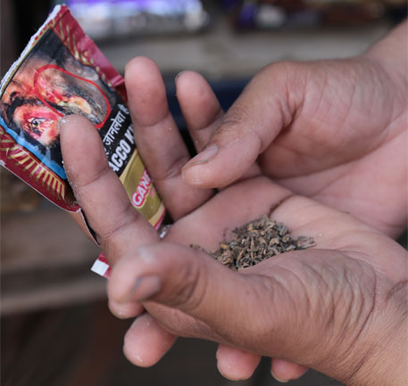 Gutkha ban has reduced consumption of tobacco in India: WHO