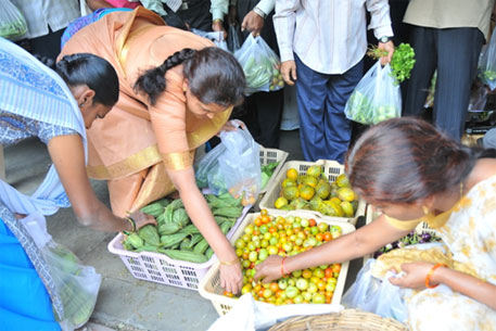 Kerala's organic policy requires the state to provide every citizen with pesticide-free food at affordable prices (Photo: Meeta Ahlawat)