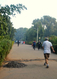 About 2,000 people visit the park every day