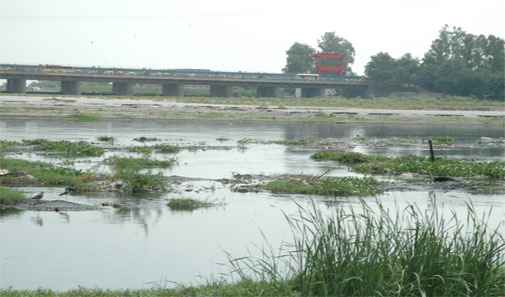 Why is river Yamuna still maily?