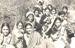 More miles to go for Chipko women
