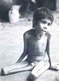 Famines in India are a nightmare of the past