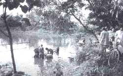 Coveted wetlands: The Calcutta (Credit: Amit Mitra /CSE)
