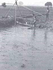Wetlands help irrigation in Ma (Credit: Amar Talwar /CSE)