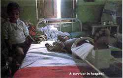 A survivor in hospital.