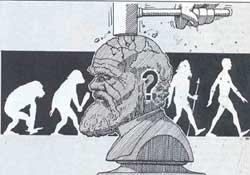 Reinterpreting Darwin
