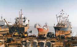To be torn apart: ships await