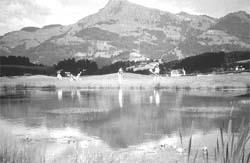 Troubled waters : Lake Geneva<