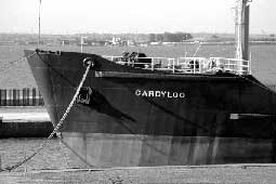 Organotins in ship paints lea