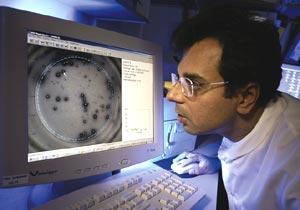 Ajit Lalvani analyses data of< (Credit: Wellcome Trust Library)