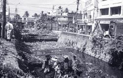 Canals of Kochi city in peril< (Credit: PRJ Pradip)