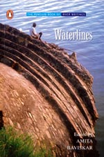 Book review: Waterlines by Amita Baviskar