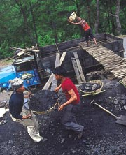 Can rat pit mining drive growt (Credit: Surya Sen / CSE)