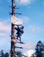 -- (Credit: Nepal Wireless Networking Proj)