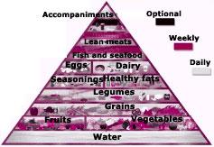 Health pyramid