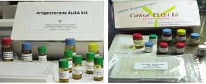 Indigenous hormone kits