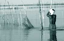 Traditional fisherfolk: deep t
