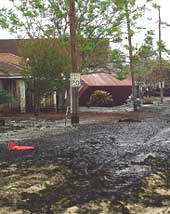 Oil spilled over a Louisiana s