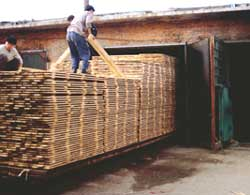 Raw deal: China imports logs a