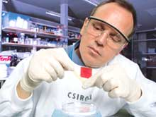 High potential: for industry a (Credit: Frank filippi / CSIRO)
