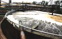 Effluent treatment in India ba (Credit: Amit Shankar / CSE)