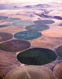 Irrigated fields reflect sunli (Credit: USDA)