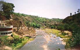 Almora's dying waterbodies