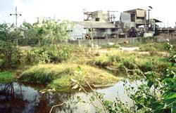49 industrial units in Gujarat receive closure notice