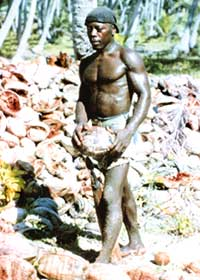 Once plantation workers