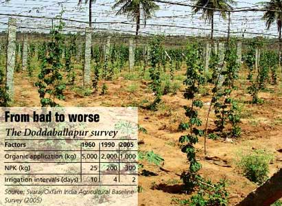Farmers in Doddaballapur in Karnataka say no to organic farming