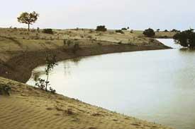 Desert flood: Sparking debate< (Credit: Kirtiman Awasthi / CSE)