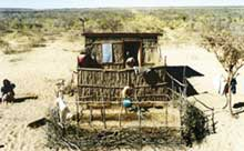 Kenya's Ogiek tribe fights government to return home