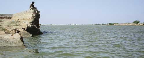 Indus delta celebrates rains